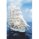 The Sea Cloud (01292)