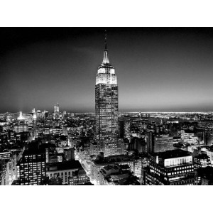 Empire State Building at Night (04109)